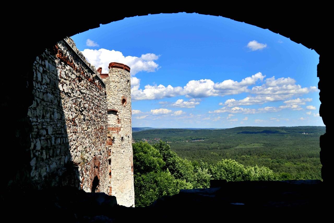 Zamek Tenczyn w Rudnie - widok na Puszczę Dulowską