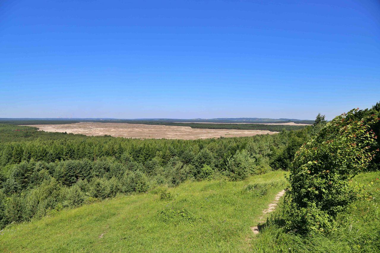 Pustynia Błędowska - widok ze wzgórza Czubatka