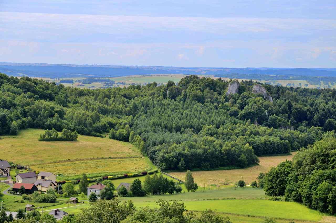 Skały Zegarowe - widok z zamku Pilcza